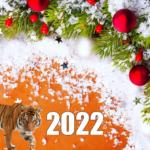 Что дарить на Новый 2022 год Тигра, Сценарий на Новый 2022 год Тигра для веселой взрослой компании